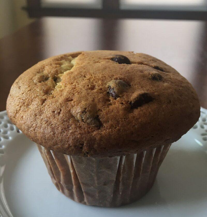 chocolate chip vanilla muffin
